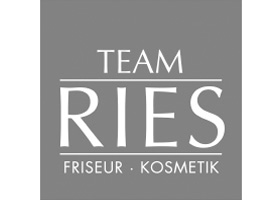 logo-ries-team